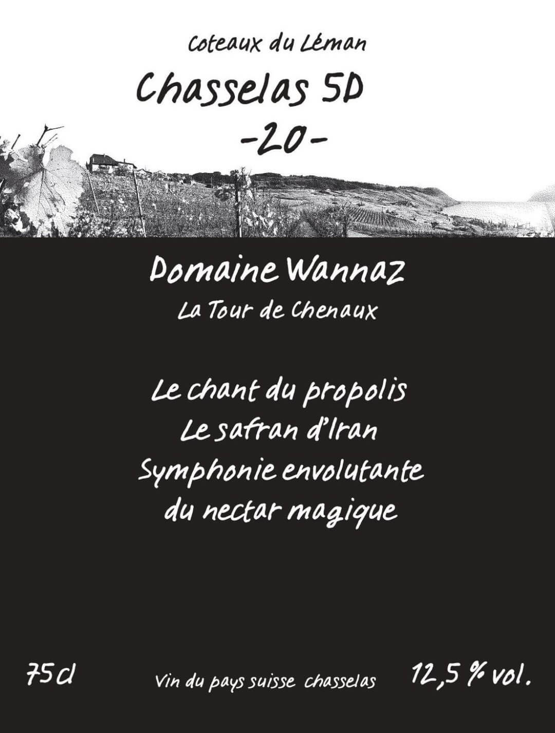 Chasselas 5D -20- (disponible prochainement)